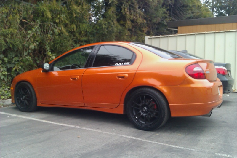 The SRT-4 WHEEL GALLERY (over 2000 PICS!!!) updated 06/04/11 - Page 18 - Dodge SRT Forum