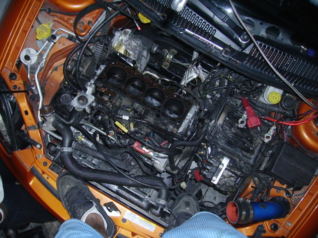 Post up pics of your engine bay-pict0137.jpg